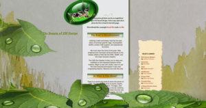 website_work-768x404